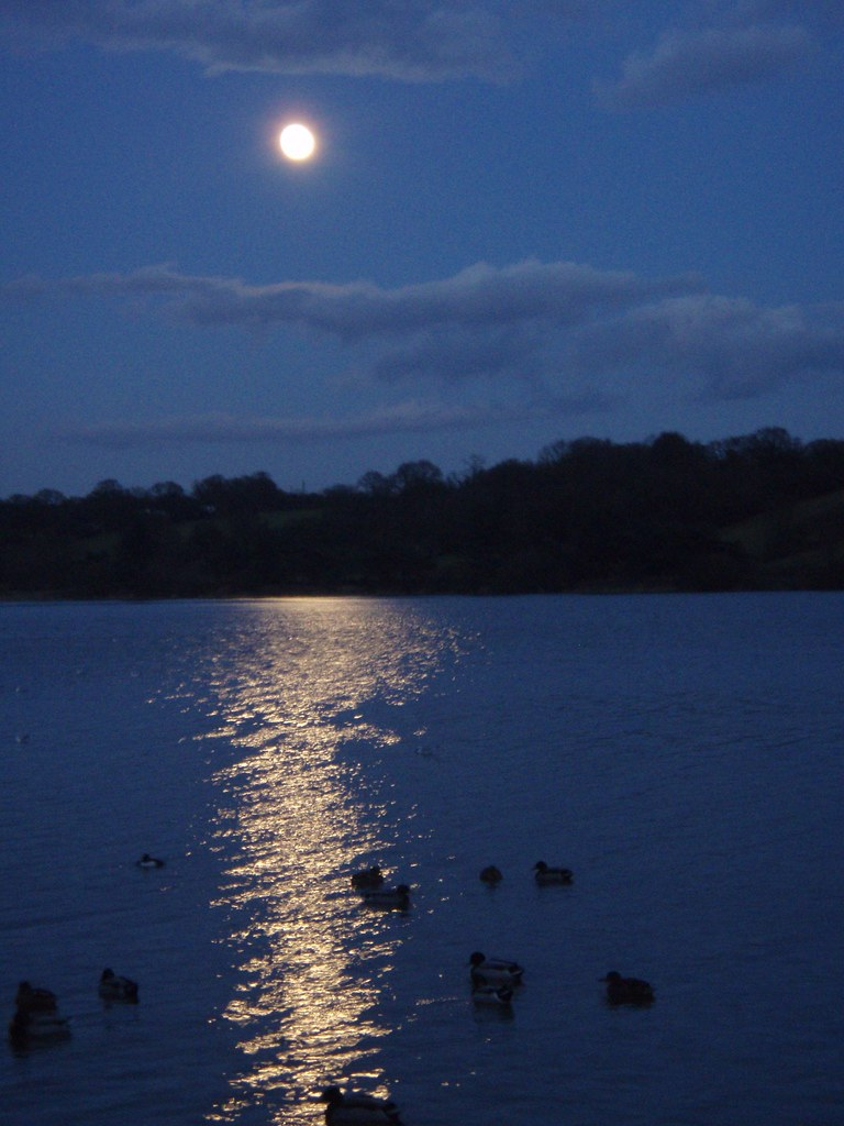 thornton by moonlight.JPG