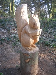 Squirrel Carving, Errington Woods