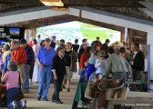 Business Expo Barn at the Hilltown Spring Festival