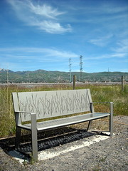 A bench on the nature trail