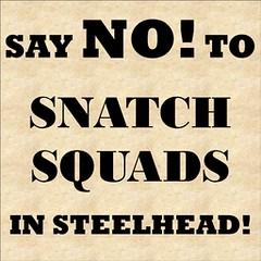 Steelhead vs NB 003
