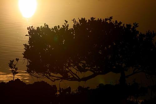 Sunset at Moruya.