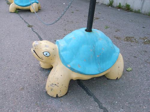 Fierce-looking tortoises