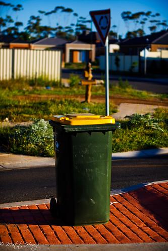 a bin in suburbia by Matt Hovey