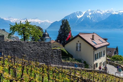 Suisse-01629