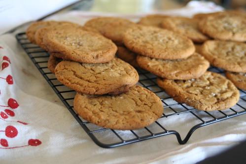 Peanut Butter Cookies w/ Milk Chocolate Chunks