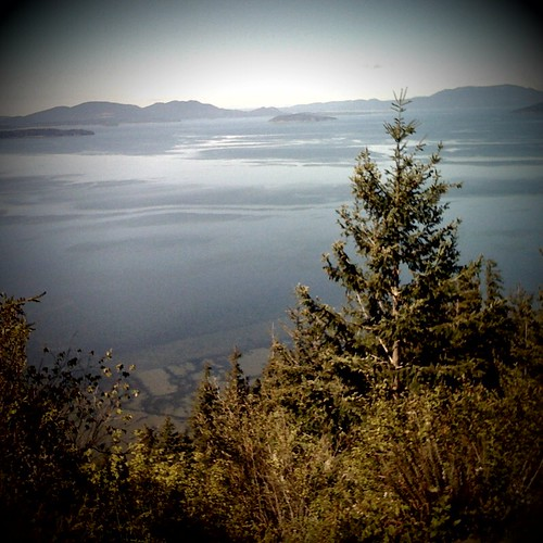 Oyster Dome hike