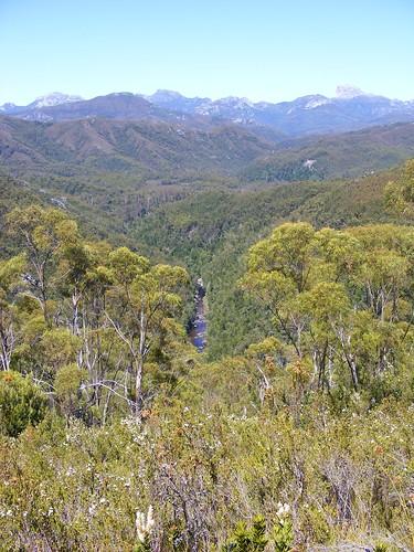 2008_0106australia20352