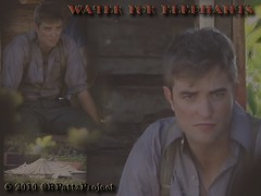 Wallpaper: [1024 x 768] Robert Pattinson's Water for Elephants
