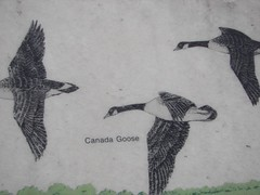 Signage, Necedah Wildlife Refuge
