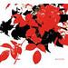 薔薇とダイヤモンド<br/>CD