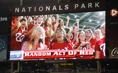 Random Acts of Red - Texas Teddy fans invade Nationals Park