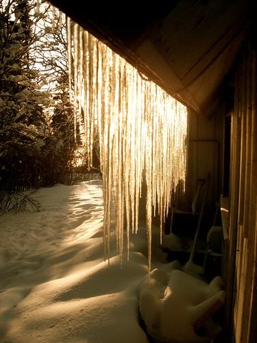 icyness