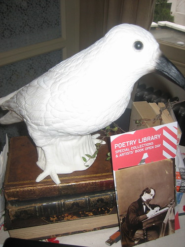Sally Gardner's bird