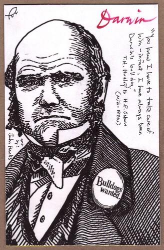Darwin Postal Art