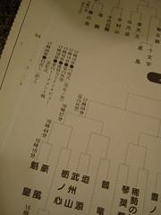 日本大相撲トーナメント SUMO
