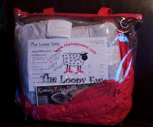 Loopy Groupie Bag