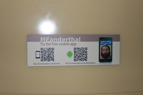 Smithsonian - Hall of Human Origins - MEanderthal