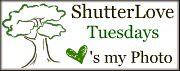 ShutterLoveT&JFavorites