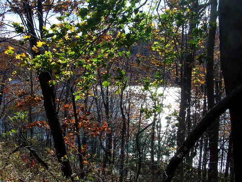 Bellwood reservoir