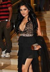 Indian Actress Ramya Hot Sexy Images Set-2  (36)