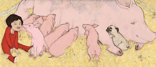 gaia cornwall pig illustration