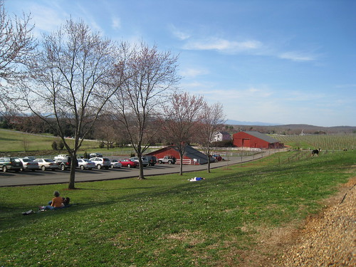 Great weather at Barboursville