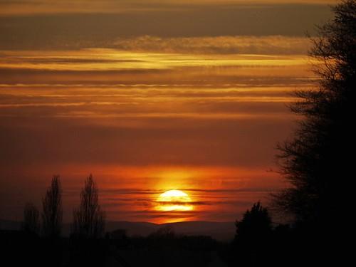 Sunset in Pollok Park