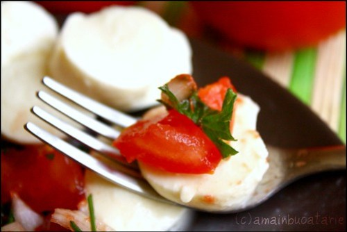 Mozzarela cu salsa de rosii1