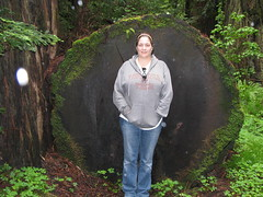 21 - Avenue of the Giants - F.K. Lane Grove - 20100526.jpg