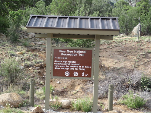Start of the Pine Tree Trail