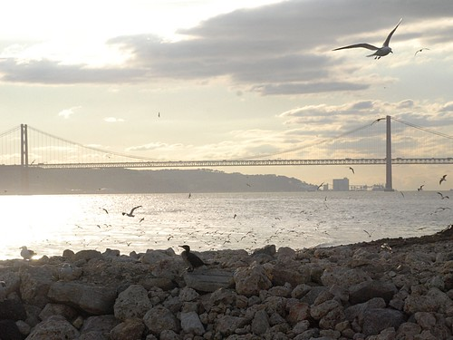 Lisboa 1336