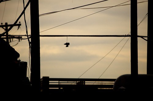 Shoes on a wire 3