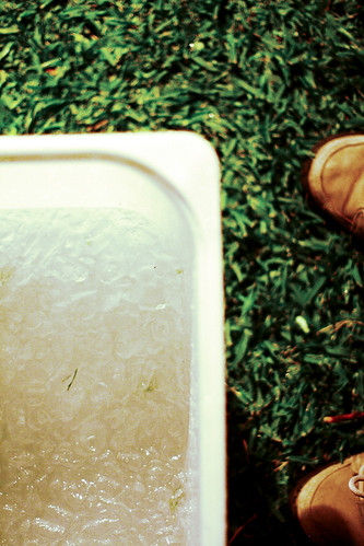 Tub of ice with shoes.
