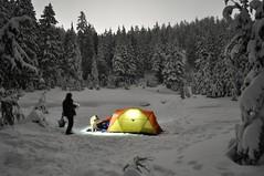 Dog Mountain snowshoe, 31 Dec 2009