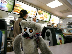 lemur waits for service at McDonald's