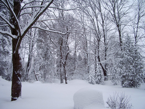 Feb 27 2010