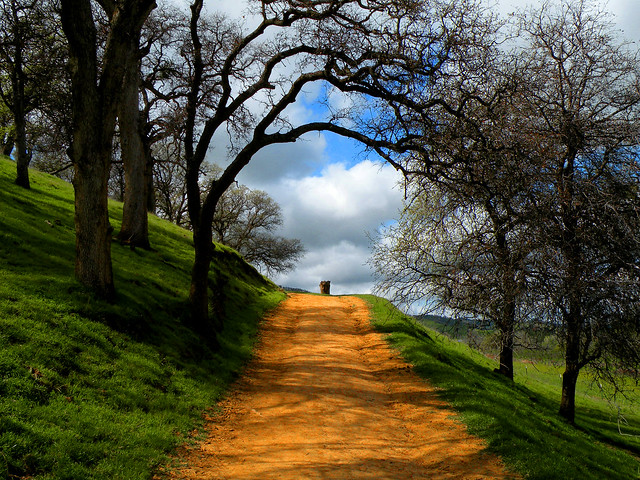 Pathway To .......