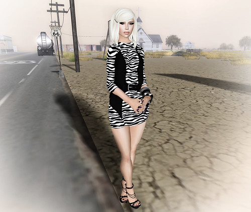 look6_003