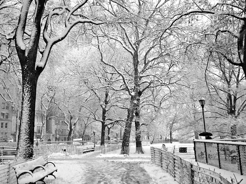 New York City Blizzard 2010