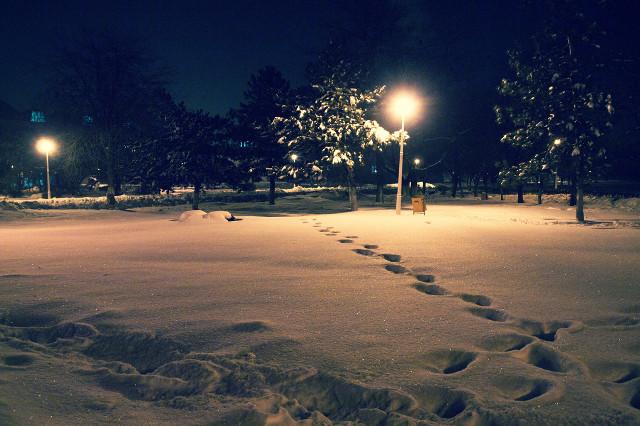 Memories of winters past