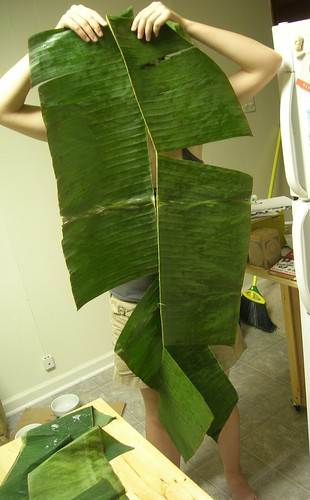 That's sure a big leaf.
