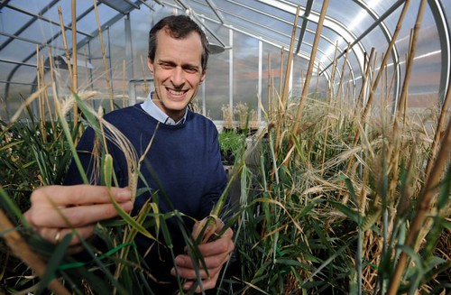 Prof Mark Tester, Director, The Plant Accelerator