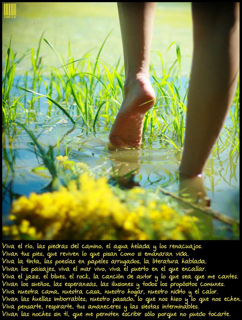 Viva el río, las piedras del camino, el agua helada y los renacuajos. Vivan tus pies, que reviven lo que pisan como si emanaran vida. Viva la tinta, las poesías en papeles arrugados, la literatura hablada. Vivan los paisajes, viva el mar vivo, viva la puerta del puerto. Viva el jazz, el blues, el rock, la canción de autor y lo que sea que me cantes. Vivan los sueños, las esperanzas las ilusiones y todos los comunes. Viva nuestra cama, nuestra casa, nuestro hogar, nuestro nidito. Vivan las huellas imborrables, nuestro pasado,  y lo que nos echen. Viva pensarte, los amaneceres y las siestas interminables. Vivan las noches sin tí, que me permiten escribir sólo porque no puedo tocarte.