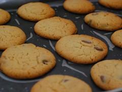 Homemade Chocolate Chip Cookies Recipe