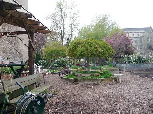 kenmore street garden