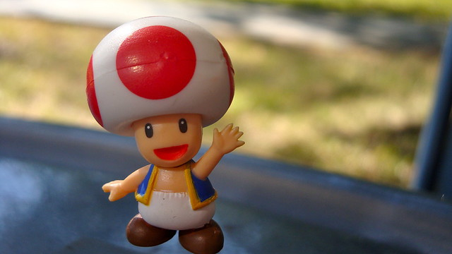 Toad Says Hi