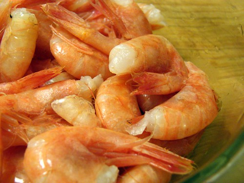 Maine shrimp