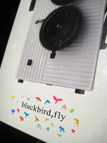 blackbird, fly camera, pt.2