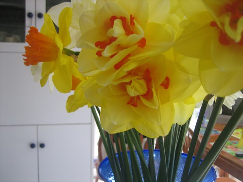 Grandpa's flowers
